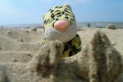 Bawiąc się w piasku