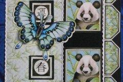 Misie panda