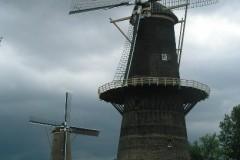 De Noord (33,3 m wyskości!) i De Nieuwe Palmboom